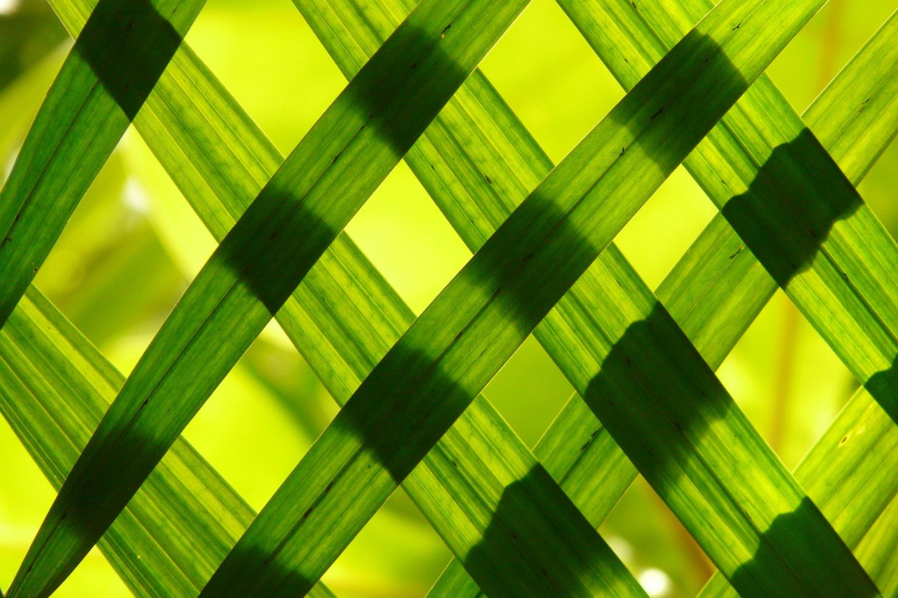 Lavorazioni tessuti conto terzi: imballaggi e accettazione